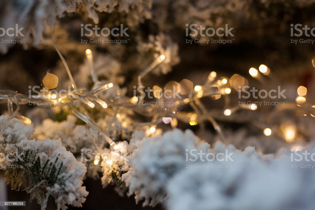 led lights in christmas tree stock photo