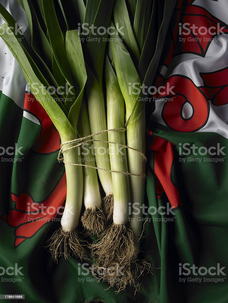 leeks on the Welsh flag stock photo