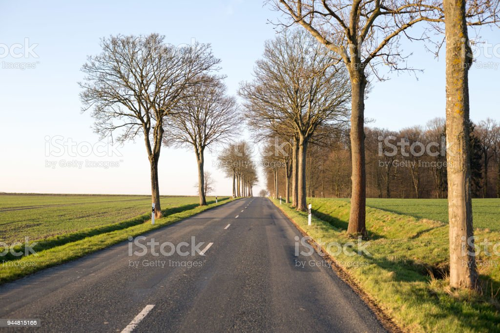 leere Strasse mit Feldern und Bäumen am Strassenrand bei sonnigem Wetter und blauem Himmel stock photo