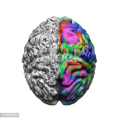 istock left and right sides of brain functions 613306316