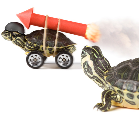 Turtle on wheels with a rocket at his back,, another one watching him