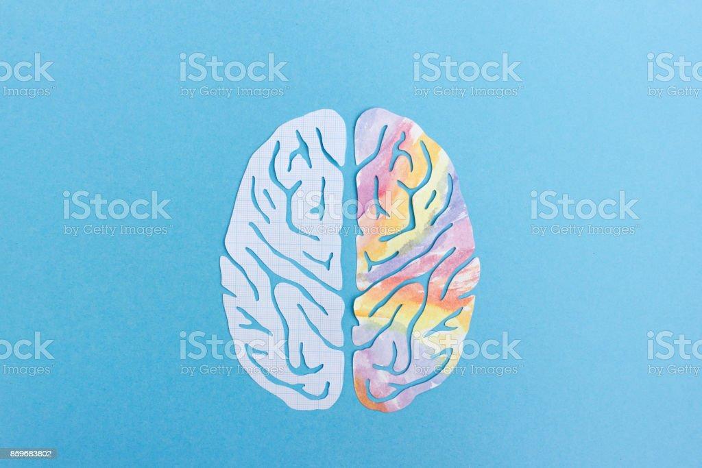 Left brain vs right brain stock photo