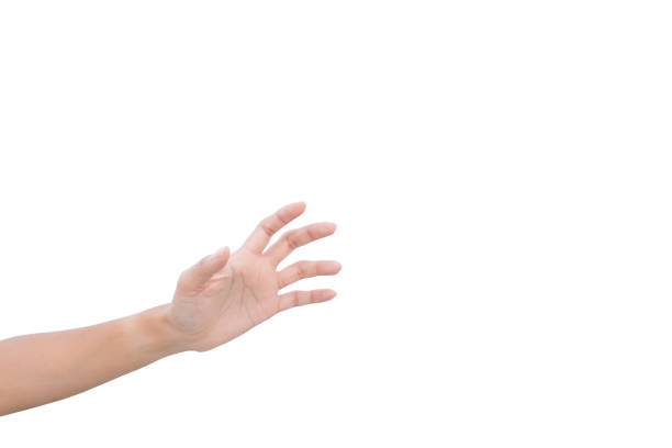 left hand of a woman trying to reach or grab something. fling, touch sign. reaching out to the left. isolated on white background - gripping stock photos and pictures