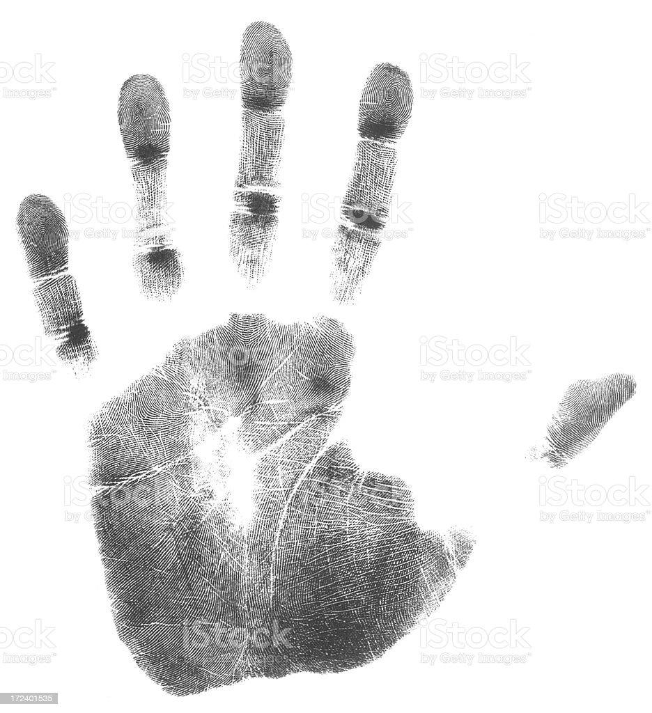 Left hand (51 MegaPixels) royalty-free stock photo