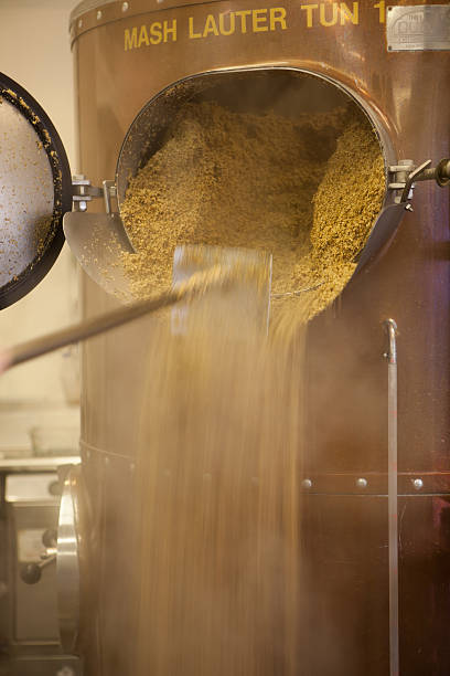 Leftover barley being drained from mashing tun. stock photo