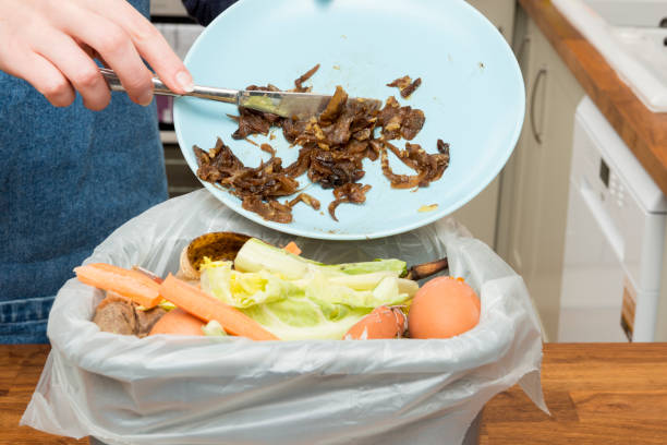 Leftovers from Plate Thrown into Bin Filled with Food Scraps Leftover food from a plate being thrown into a waste bin filled with food scraps leftovers stock pictures, royalty-free photos & images