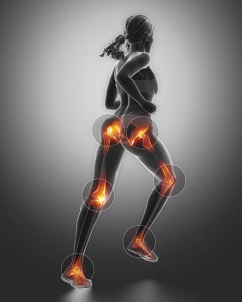 Leg most injured regoins in sport - ankle,hip,knee stock photo