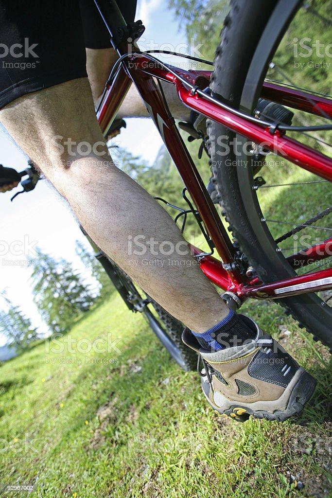 leg of a mountain biker stock photo