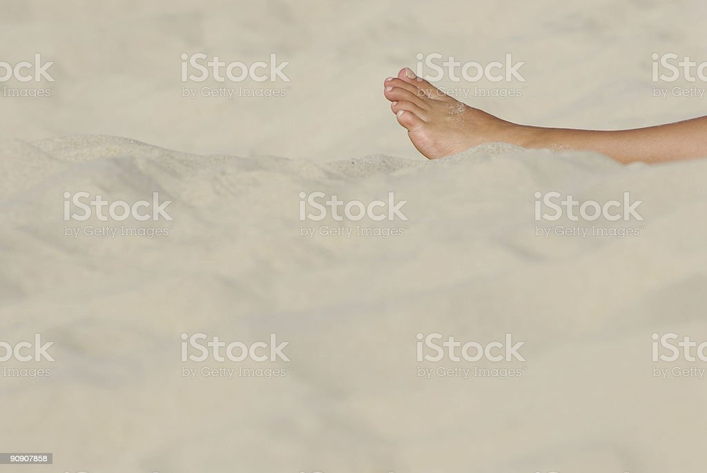 Leg royalty-free stock photo