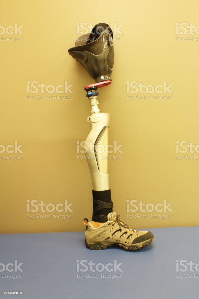 Leg prosthesis with socket and shoe stock photo