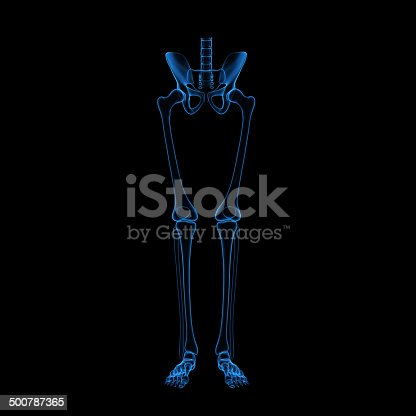 496193203 istock photo Leg skeleton 500787365