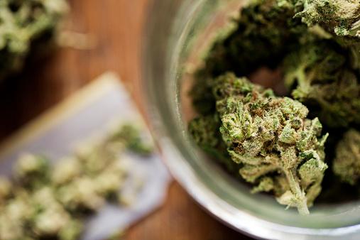 Legal Marijuana Stock Photo - Download Image Now