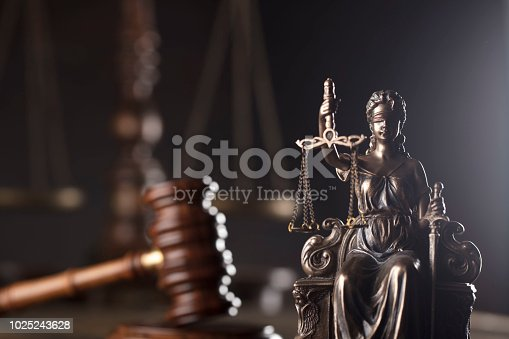 istock Legal office concept. 1025243628