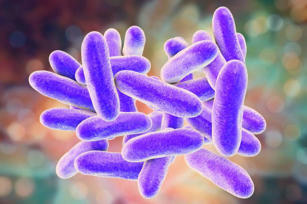 Legionella pneumophila bacteria Legionella pneumophila bacteria, 3D illustration, the causative agent of Legionnaire's disease gram stain stock pictures, royalty-free photos & images