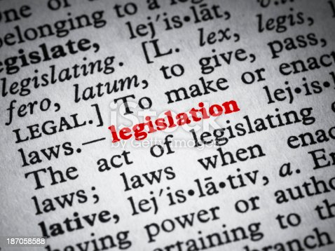 Dictionary definition of legislation