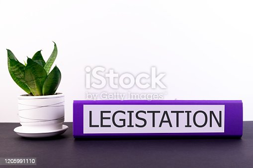 826166958 istock photo Legistation inscription on office folder lying on a dark table with a flowerpot and flower on a light background 1205991110