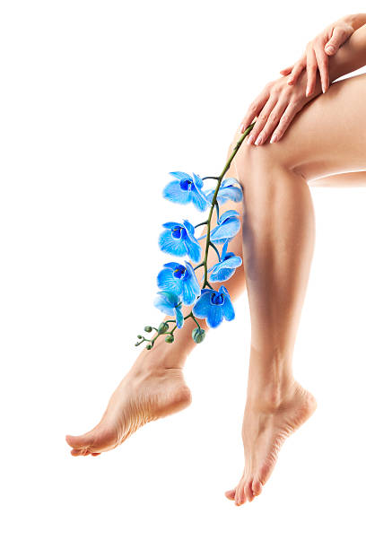 Legs and Orchid stock photo