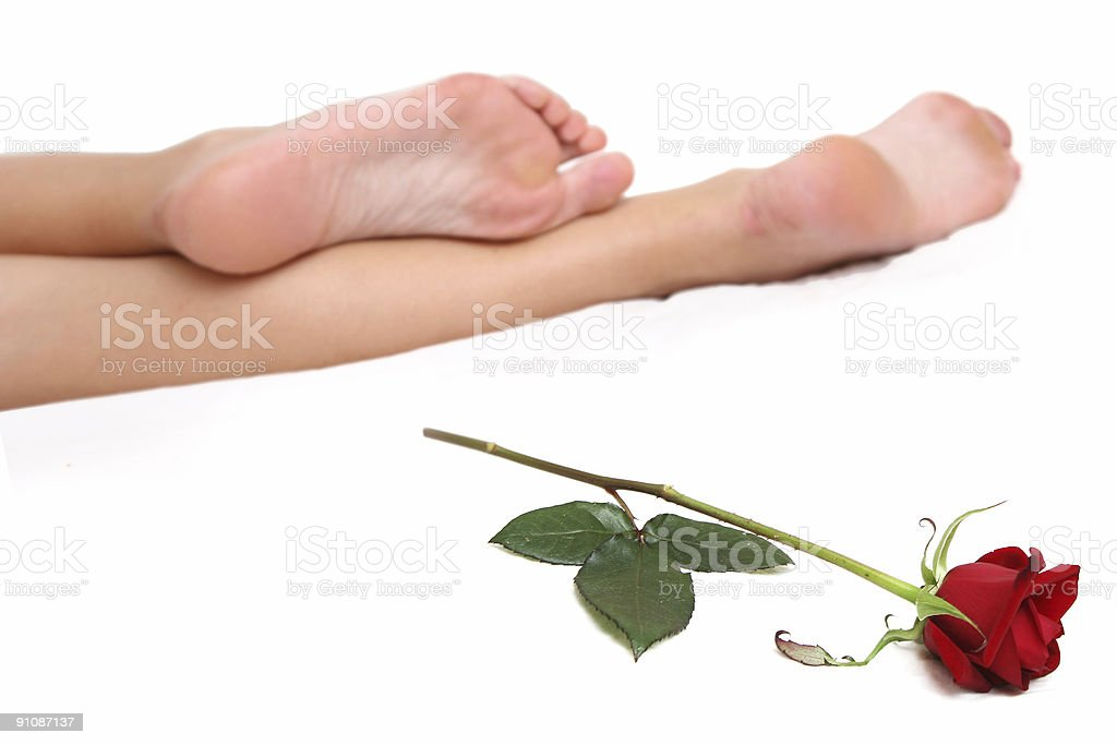 Legs and Rose royalty-free stock photo