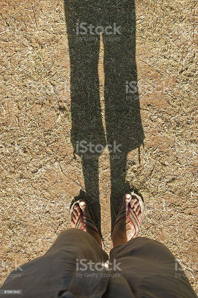 Jambes et leur ombre photo libre de droits