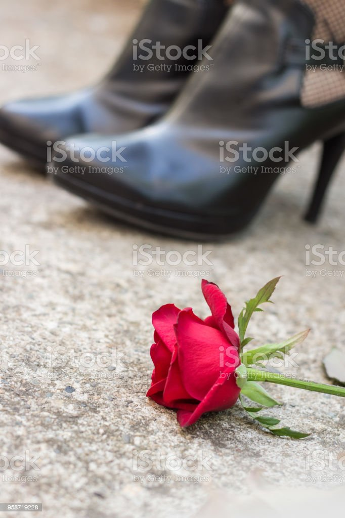 Legs in  heeled shoes with red rose stock photo