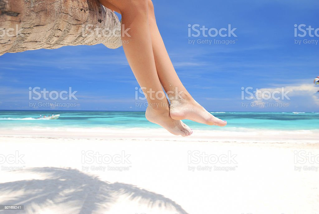 Legs of a woman sitting on a palm tree at the beach royalty-free stock photo