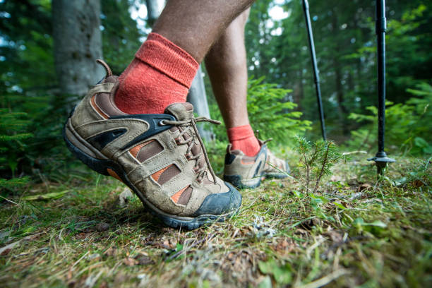 legs of the traveler in hiking boots with trekking poles stock photo