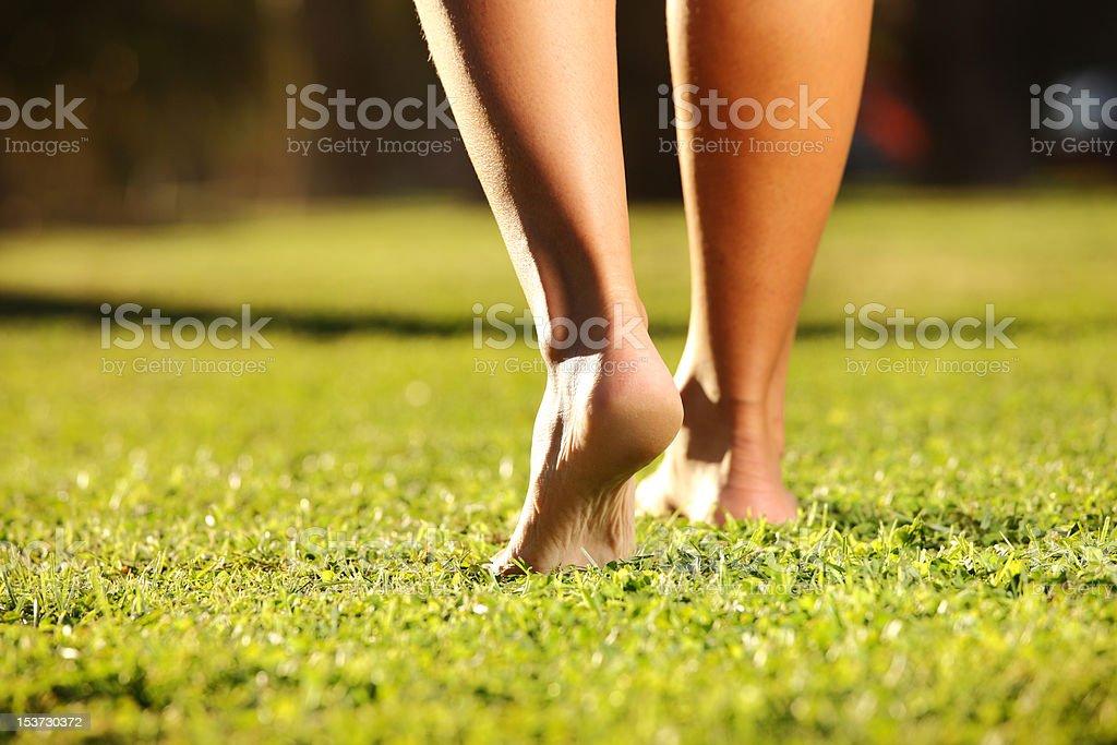 Legs on the grass stock photo