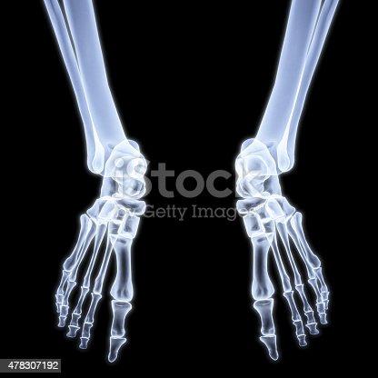 istock legs 478307192
