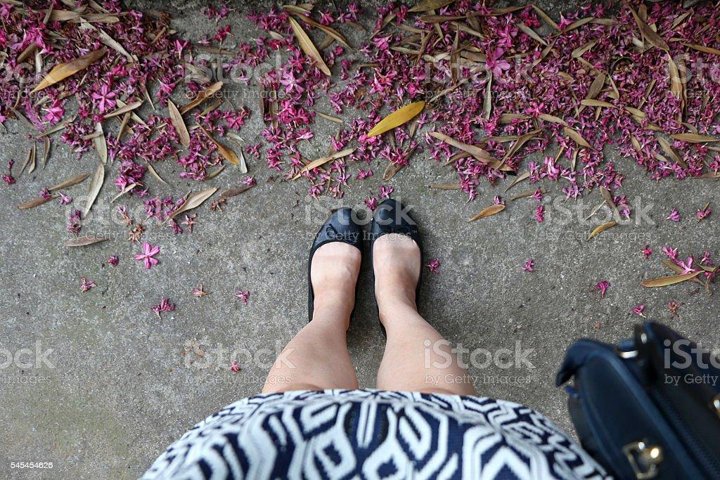 Beine  – Foto
