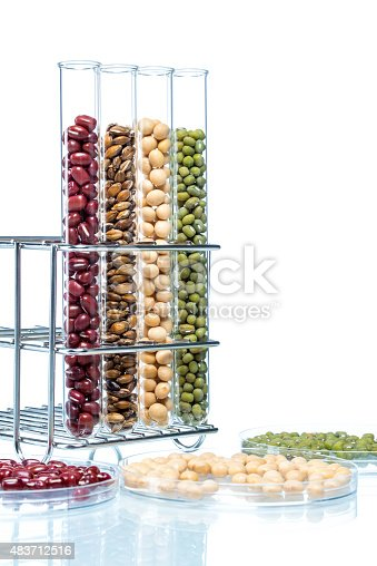 891126108istockphoto Legume with Wheat genetically modified, Plant Cell 483712516
