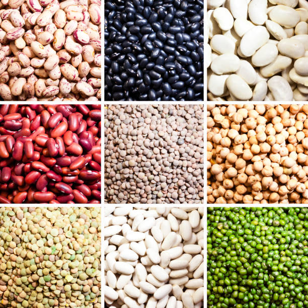 Legumes: Dry beans collection stock photo