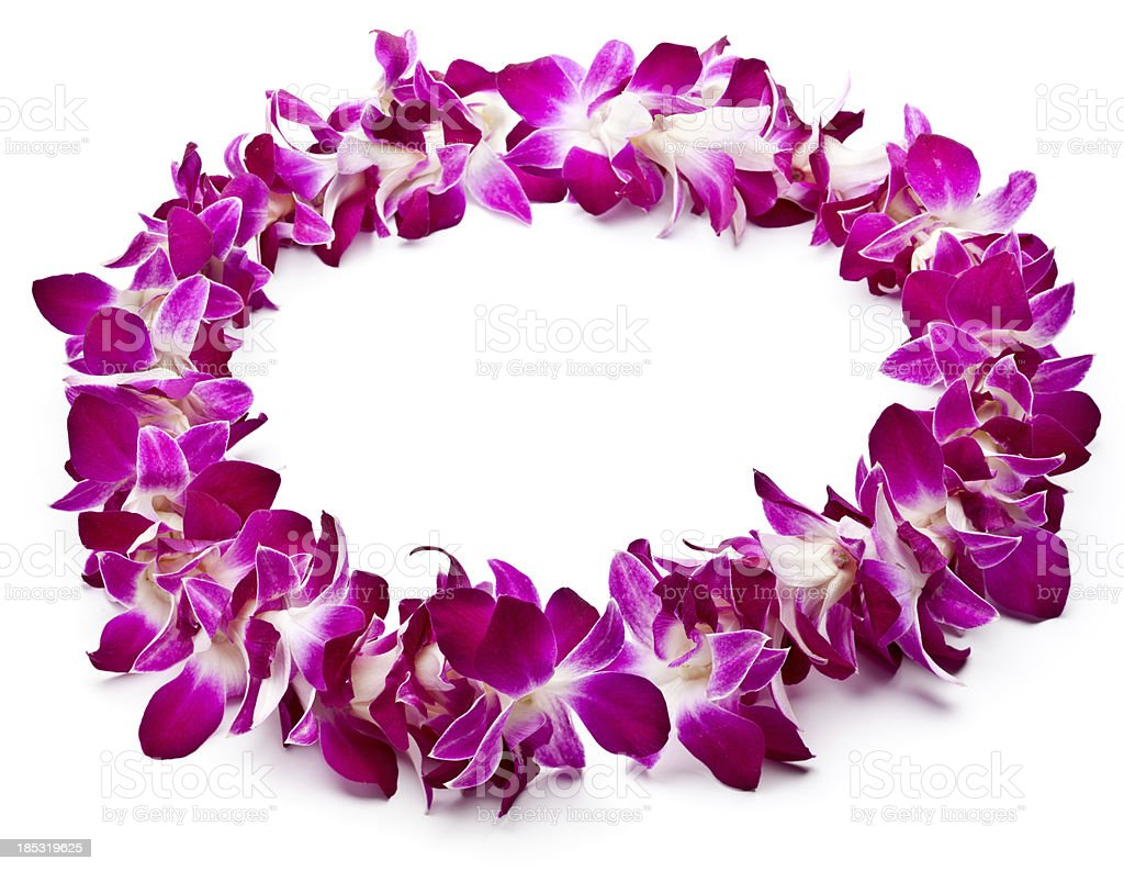Lei made of purple orchids on white background stock photo