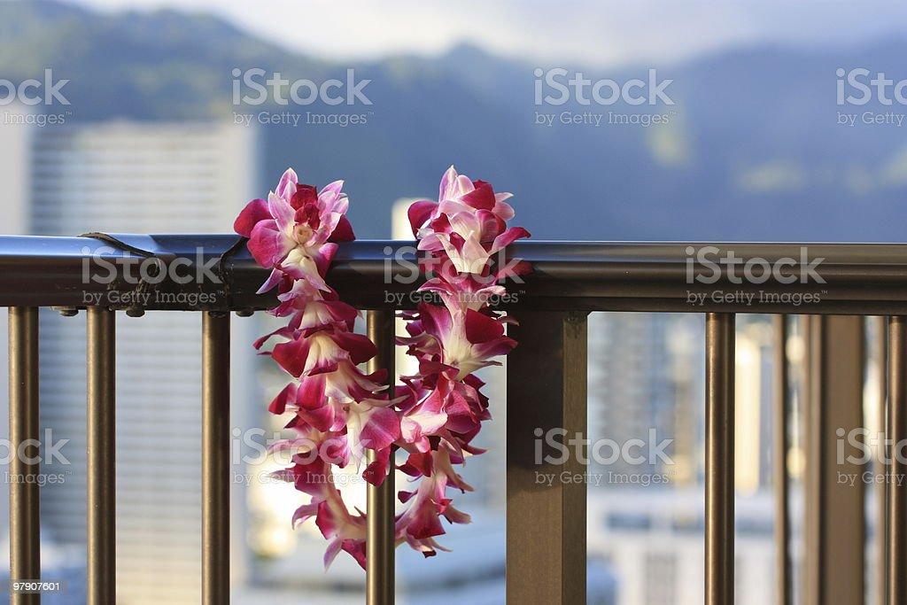 Lei on a Waikiki Balcony royalty-free stock photo