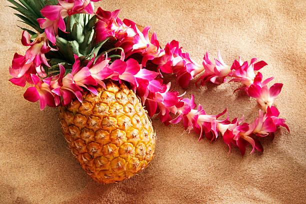 lei sur ananas sur la plage - Photo