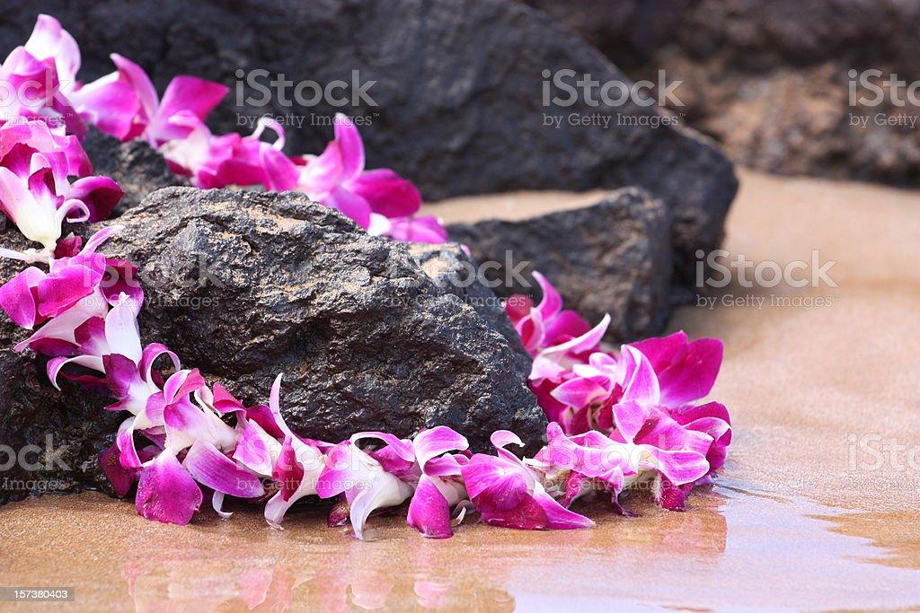 Lei on the Rocks stock photo
