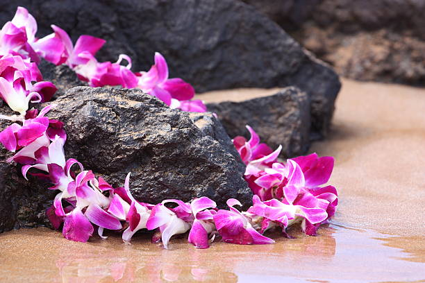 Lei on the Rocks stock photo
