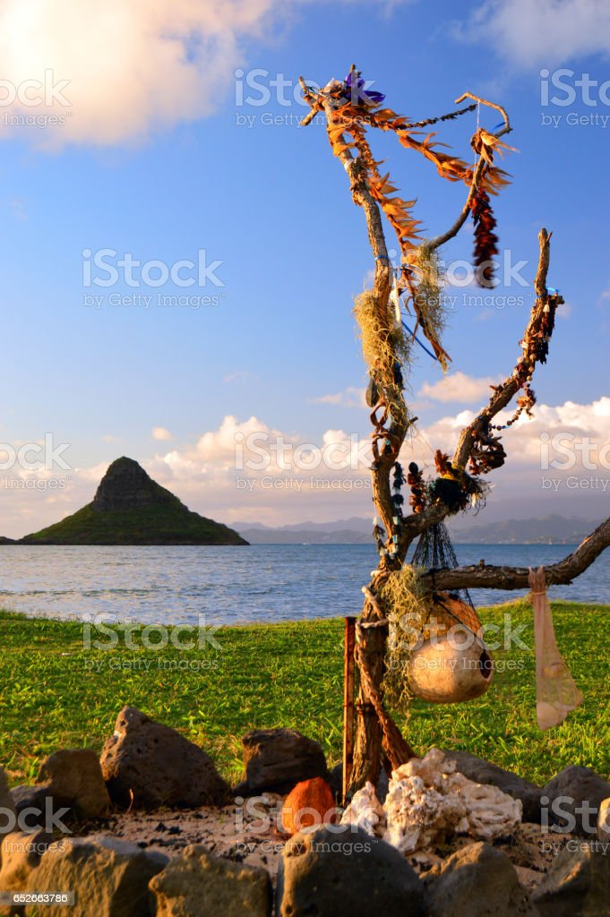 Leis returning to the earth stock photo