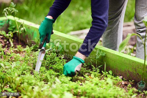 horizontal shot of gardening activity, unrecognizable woman hands planting seeds in the springtime.
