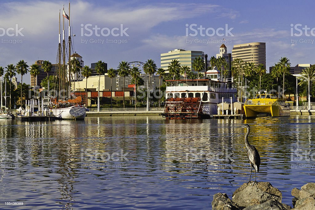 Leisure Day in Long Beach (P) stock photo