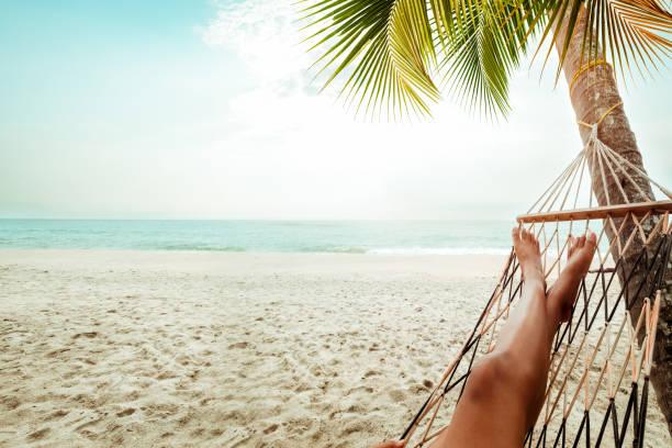 leisure in summer - amaca foto e immagini stock