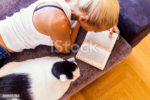istock Leisure time with a cat 886955784