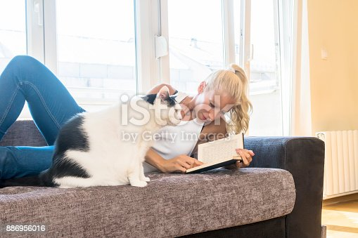 istock Leisure time with a cat 886956016