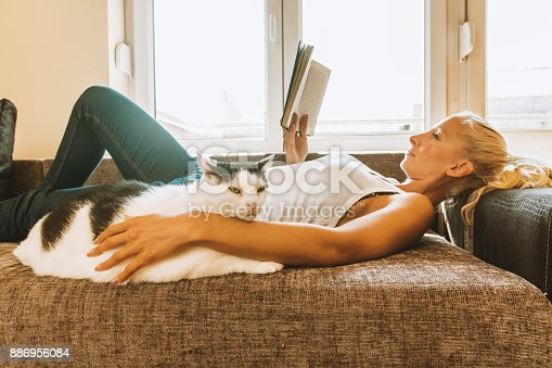 istock Leisure time with a cat 886956084