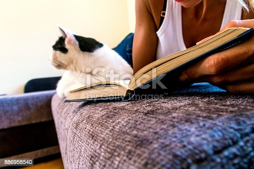 istock Leisure time with a cat 886958540
