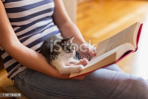 istock Leisure time with a kitten 1167784576