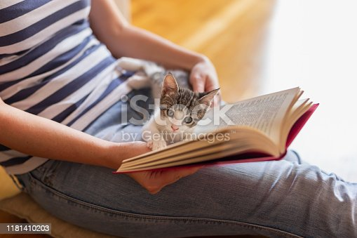 istock Leisure time with cat 1181410203