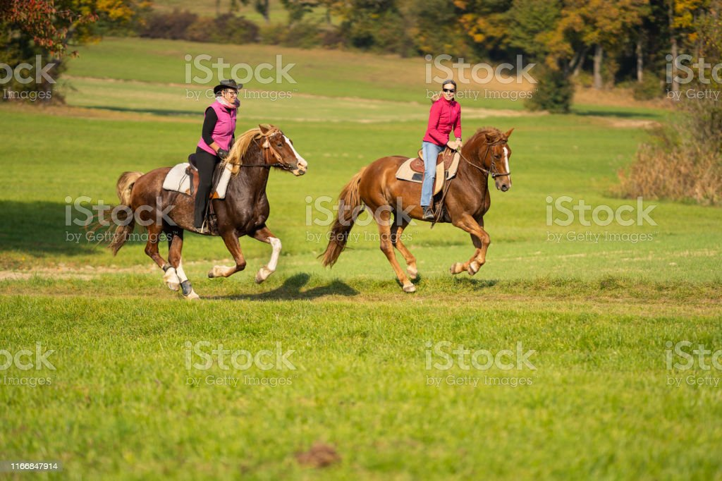 Leisure Western Rider On Galloping Horses Outdoors In Autumn Stock Photo Download Image Now Istock