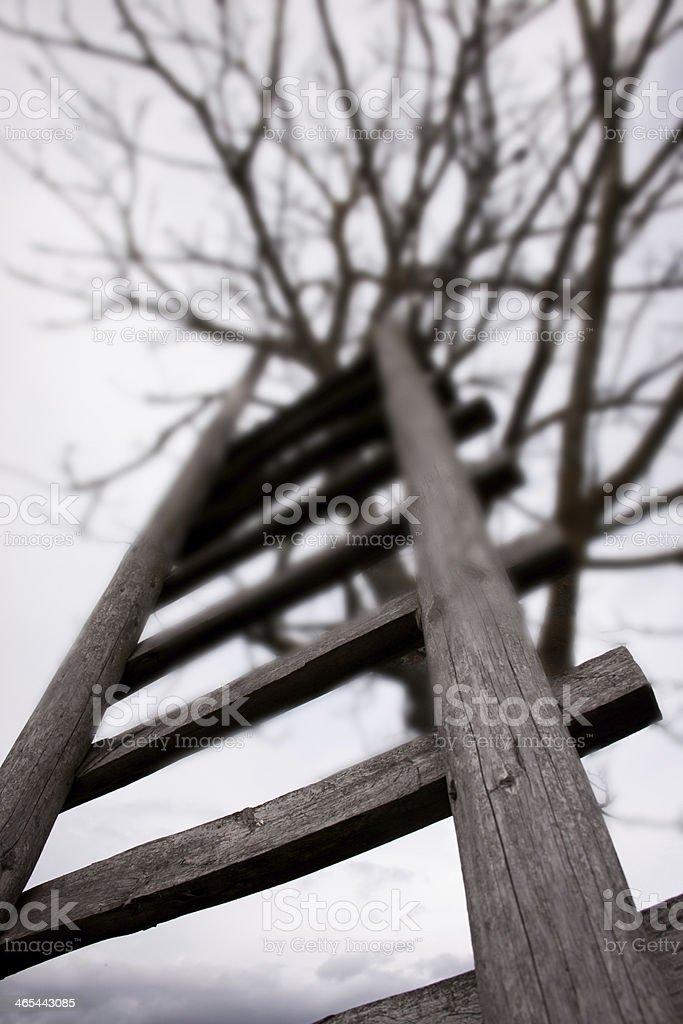 Leiter stock photo