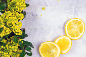 Lemon and branches with yellow flowers on concrete background with place for text. Top views with clear space.