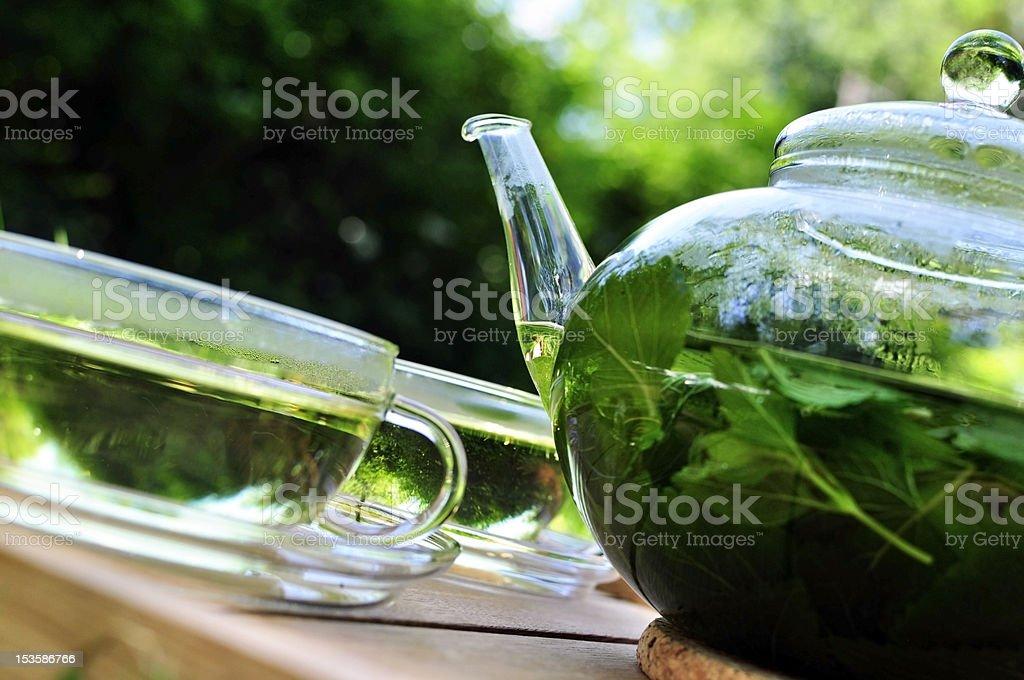 Lemon Balm Tea in the Garden royalty-free stock photo